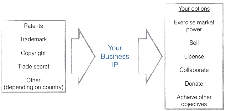 strategic-options-for-business-IP